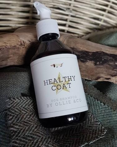 Ollie & Co Healthy Coat Dog Shampoo